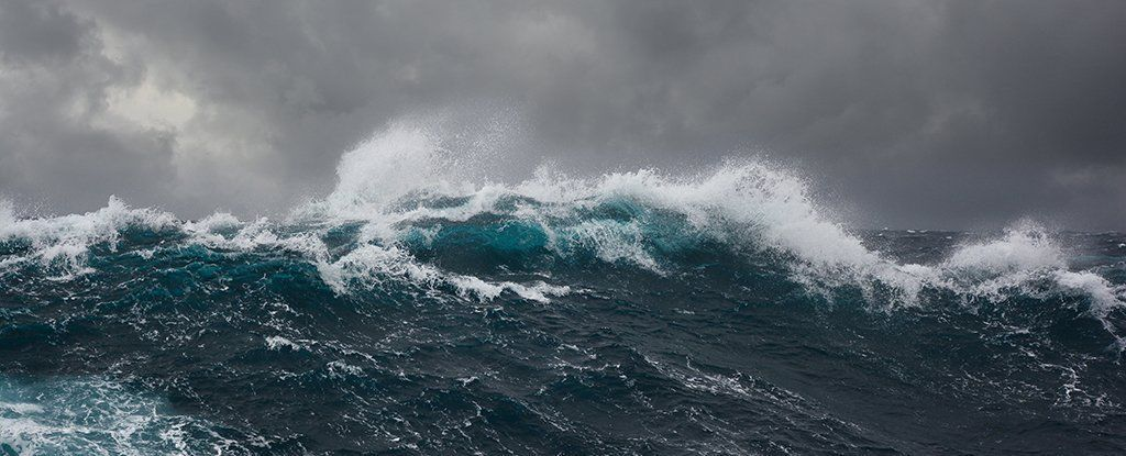 لماذا انشغل العلماء بموجة عملاقة على شواطئ نيوزيلندا؟