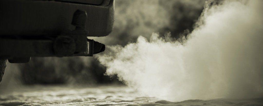 فضيحة! شركات صناعة السيارات الالمانية تختبر دخان محركاتها على القرود والبشر
