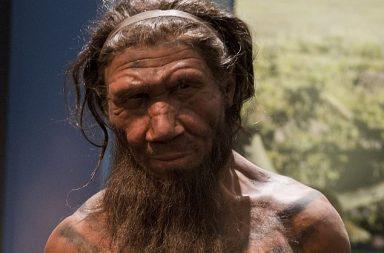 يبدو أننا لسنا السبب بانقراض النياندرتال وهذا هو سبب اختفائهم - الأسباب الكامنة وراء انقراض أسلاف البشر - لماذا انقرض الإنسان القديم