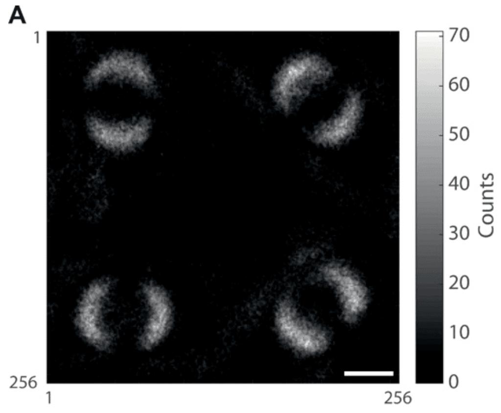 الكشف عن أول صورة للتشابك الكمي الحوسبة الكمومية فوتونات للضوء يتشاركان نفس الحالة المادية اختبار عدم المساواة التشابك الكمي الشبحي