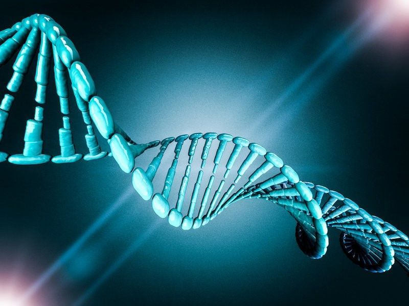 تفعيل جين واحد يكفي لتغيير خلايا الجلد إلى خلايا جذعية