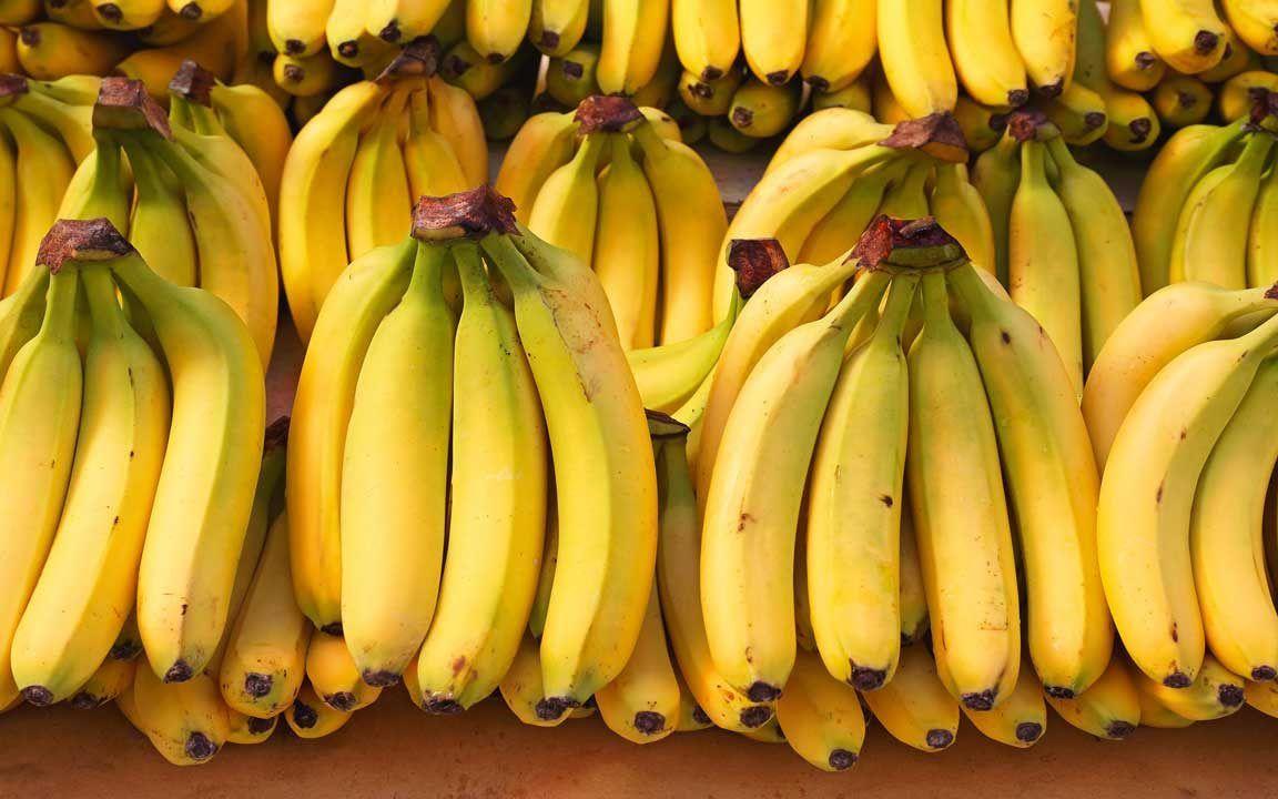 نتيجة بحث الصور عن تجارة الموز فى جامايكا