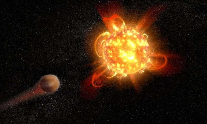 ما هي الأقزام الحمراء كيق يتكون النجم الأحمر نهاية الأقزام الحمراء كيف يتشكل النجم الأحمر الفضاء الفلك الشمس نجوم باردة حرارة سطح النجم