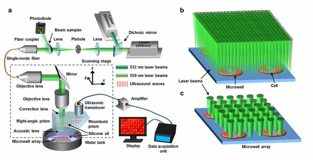 (صورة) المعدات المستخدمة في تقنية PAM لتصوير معدلات الأيض في خلايا السرطان.