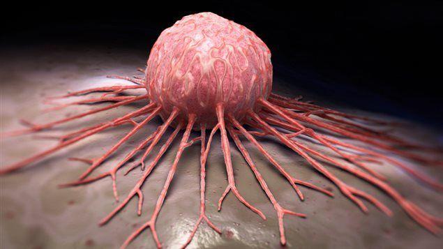 هل السرطان مرض معد أنا أصدق العلم