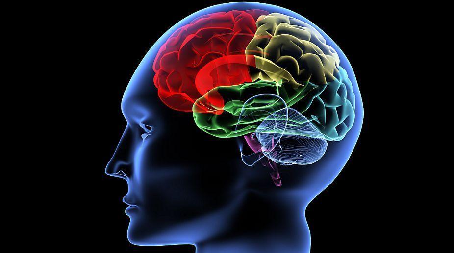 كيف تحمي النشاطات الدماغية من تفاقم القلق؟