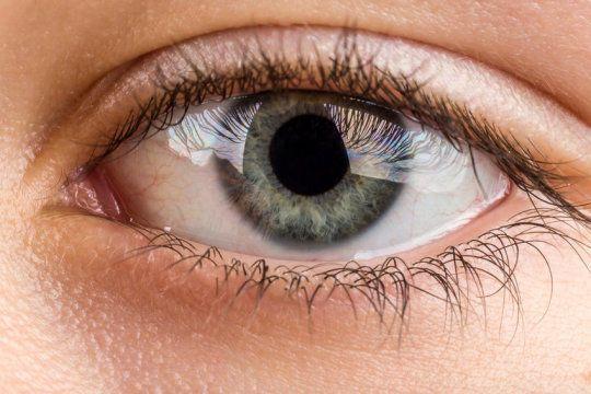 اكتشاف الخلية المسؤولة عن قصر النظر في شبكية العين
