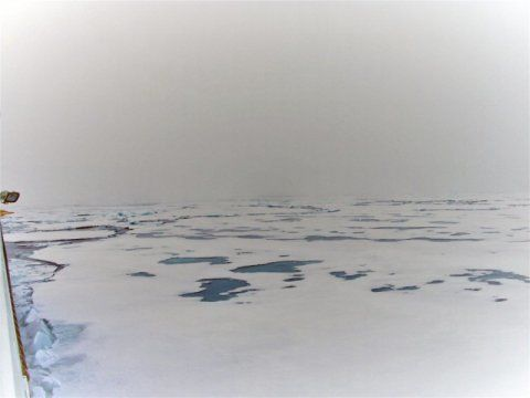 قد يكون لذوبان الجليد البحري بعض النتائج الايجابية