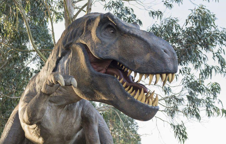سر عضة التيرانوصور T Rex الأقوى في تاريخ الكائنات الحية