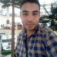 محمد السيد الشامي