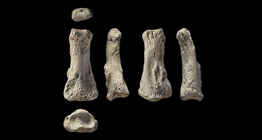 العثور على أقدم أحفورة بشرية في شبه الجزيرة العربية تعود إلى 86 ألف سنة على الأقل