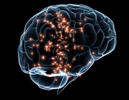 كيف يعالج الدماغ اللغة ؟ و هل لغة الاشارة تعتبر لغة ايضا ؟