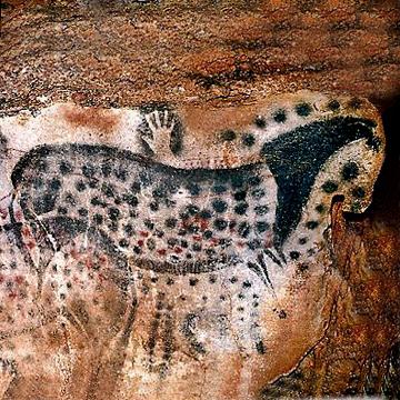 ما سر ولع رسامي العصر الحجري بالخيول، حتى قبل ترويضها بآلاف السنين؟ - حيوانات مرسومة على جدار أحد كهوف العصر الحجري في فرنسا أو إسبانيا