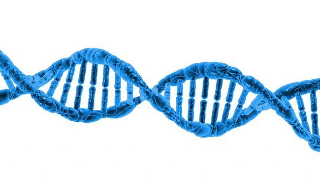تاريخ علم الوراثة