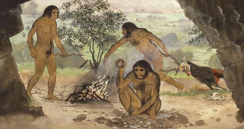 هذا هو سبب انقراض الإنسان المنتصب (Homo Erectus)
