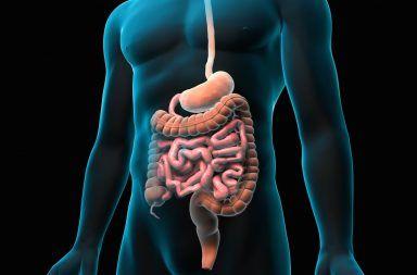 التهاب الصفاق الثانوي: الأسباب والأعراض والتشخيص والعلاج غشاء رقيق يُحدد الجدار الداخلي للبطن ويغطي أغلب الأعضاء البطنية أعضاء السبيل الهضمي