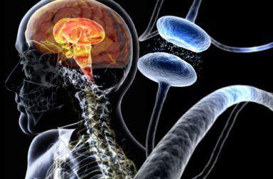 كيف يمكن لعدوى في الأمعاء أن تسبب مرض باركنسون الصلة بين الجهاز المناعي ومرض الشلل الرعاشي (مرض باركنسون) Parkinson's Disease