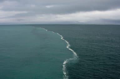 صورة التقطت في خليج ألاسكا عام 2013 من قبل Kent Smith