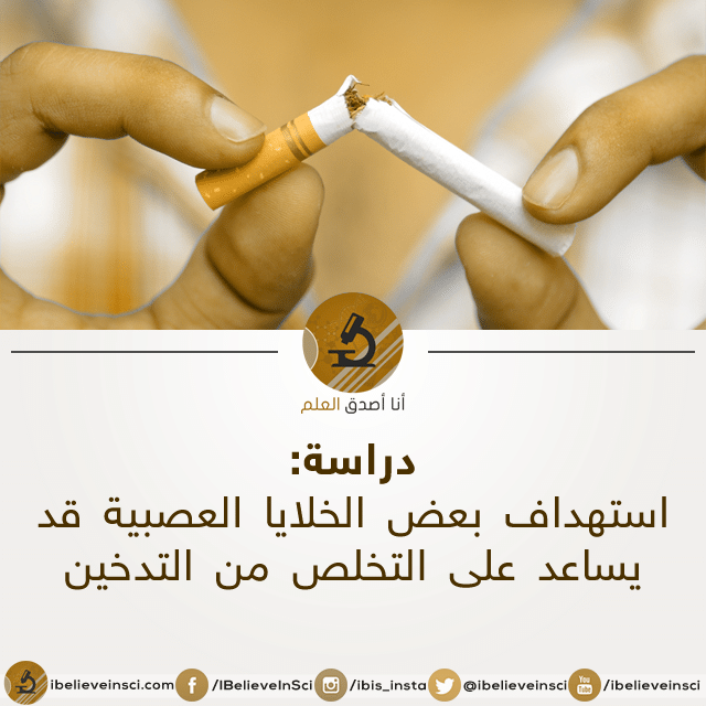 9fb6f279fe667 استهداف بعض الخلايا العصبية قد يساعد على التخلص من التدخين