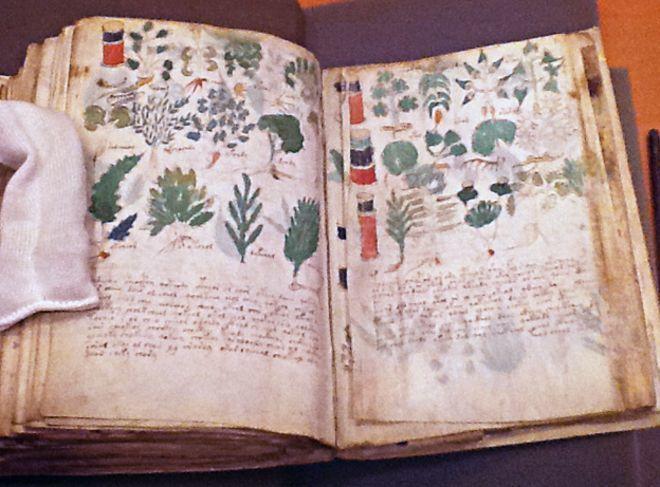 لغة مفقودة، شيفرة أم خدعة؟ لماذا لا تزال مخطوطة فوينيتش Voynich تُحيِّر الخبراء