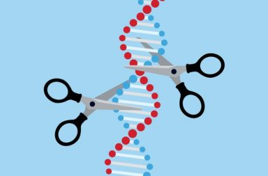 الحكم بالسجن على العالم الذي استخدم تقنية CRISPR لتعديل جينات الأطفال! - هل من القانوني استخدام تقنية كريسبر لتعدينات أجنة الأطفال