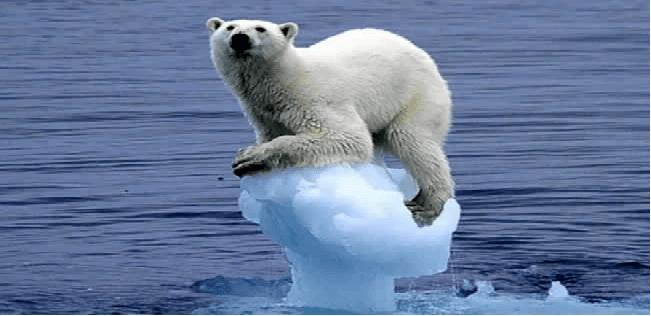 كيف سيبدو العالم لو ذاب كل الجليد؟
