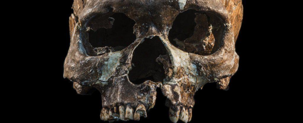 بقايا عُمرها ثمانية آلاف عام تُخبرنا قصةً مُدهشةً عن أسلاف سكان جنوب شرق آسيا