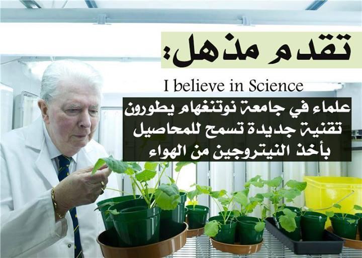 تقنية جديدة تسمح للمحاصيل بأخذ النيتروجين من الهواء