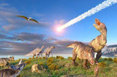 اليوم الأخير للديناصورات: لمحة عن كارثة الكويكب فوهة تشيكشولوب حادثة انقرا الديناصورات كيف انقرضت الديناصورات الجيولوجيا المذنب