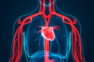 المتلازمة الكبدية الرئوية HPS: الأسباب والأعراض والتشخيص والعلاج تخسر الرئة قدرتها على نقل الأكسجين إلى الأنسجة مرضى تشمع الكبد