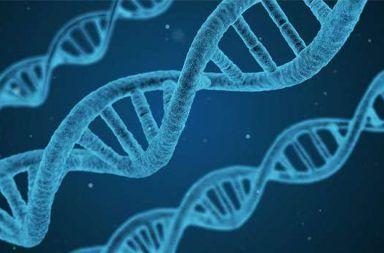 ما مدى قربنا من علاج السرطان باستخدام تقنية كريسبر للتعديل الجيني؟ 9burningques-384x253