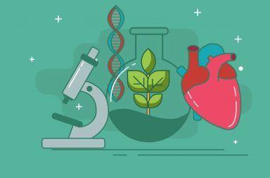 علم الأحياء البيولوجيا الكائنات الحية