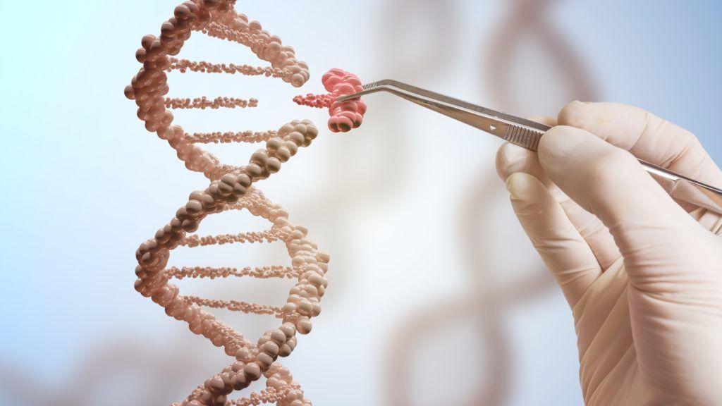 عصرنا يشهد أبطأ سرعة لتغير جينات البشر عبر الطفرات الجينية