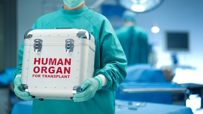 زراعة الكبد: متى تحتاجها وما هي المخاطر المحتملة لماذا يقوم بعض المرضى باجراء جراحة لزراعة الكبد الرفض المناعي لحالات الزرع