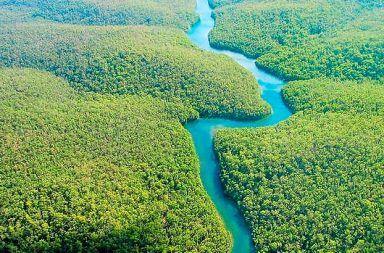 ما هو أطول نهر في العالم أكبر أنهار العالم نهار الكونغو النيل الميسيسيبي الأمازون يانغتسي النهر الأصفر آمور آرغون المياه الجارية