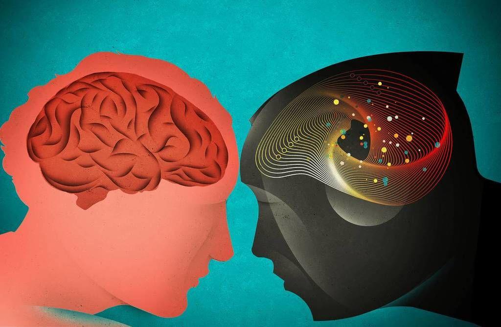 ما وجه الشبه بين الذاكرة قصيرة المدى عند البشر و الشمبانزي ؟