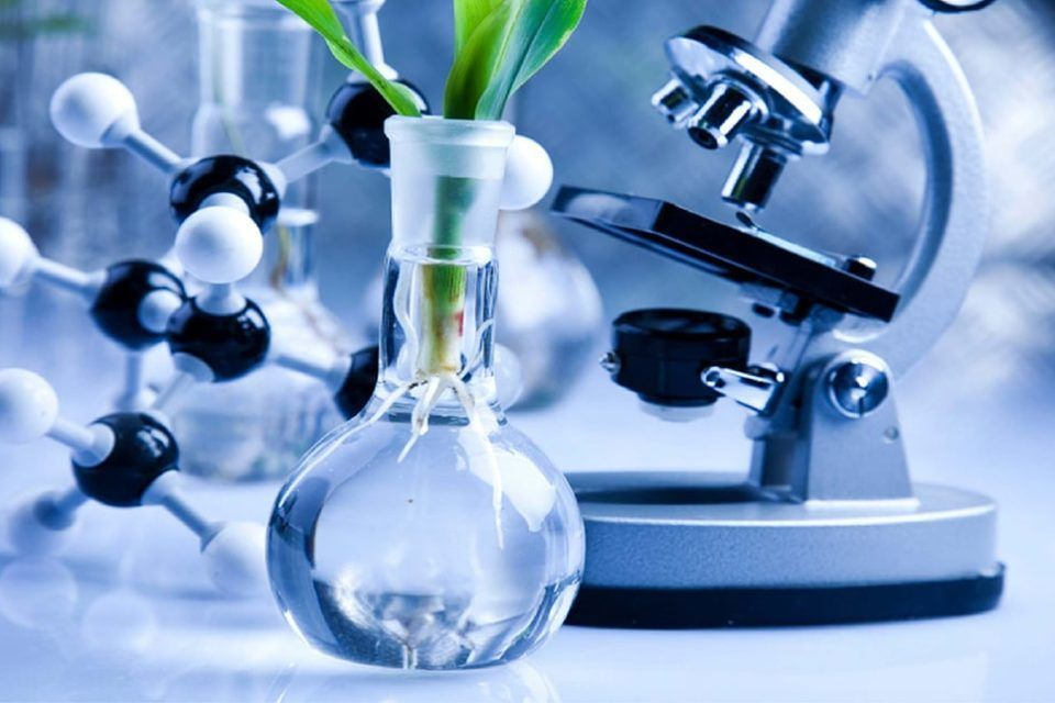 Biotechnology definition research and applications