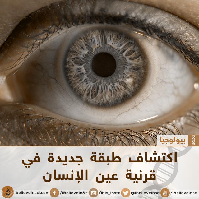 اكتشاف طبقة جديدة في قرنية عين الإنسان