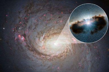 تقاطع أينشتاين: نجم زائف يساعدنا على قياس معدل دوران الثقوب السوداء معرفة سرعة دوران الثقب السود حول نفسه الثقب الأسود فائق الكتلة