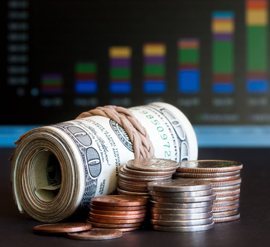 صندوق الديون - صندوق السندات - الحكومية والبلدية وسندات الشركات والسندات القابلة للتحويل - السندات المدعومة بالرهن العقاري