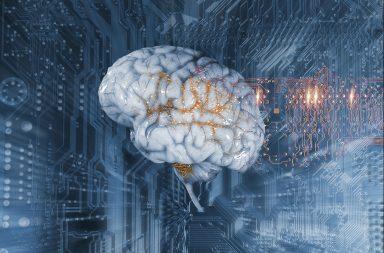 النشاط العصبي وطول العمر.. علاقة تُكشَف للمرة الأولى - نشاط الجهاز العصبي يؤثر ربما على طول عمر الإنسان - ارتبطت زيادة الاستثارة العصبية بحياة أقصر