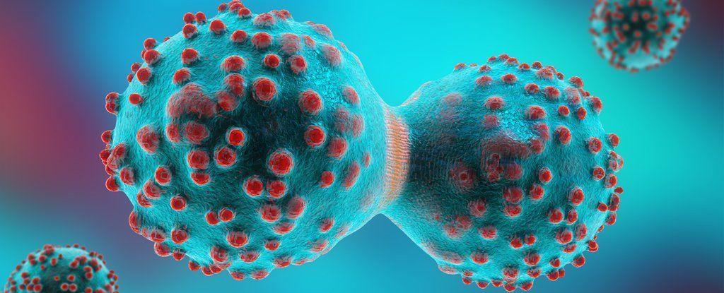 السرطان الورم الشفاء الاستئصال العلاج الكيميائي
