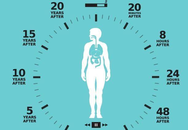 ماذا يحدث لجسدك خلال 40 يوما من التوقف عن التدخين أنا أصدق العلم
