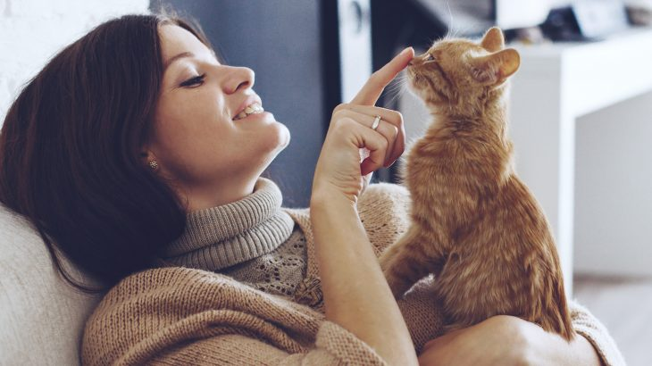 تعلق القطط بأصحابها قوي مثل تعلق الأطفال بذويهم والكلاب بأصحابها - القطط حيوانات فاترة لا مبالية - محبة الهررة للأشخاص الذين تعيش معهم