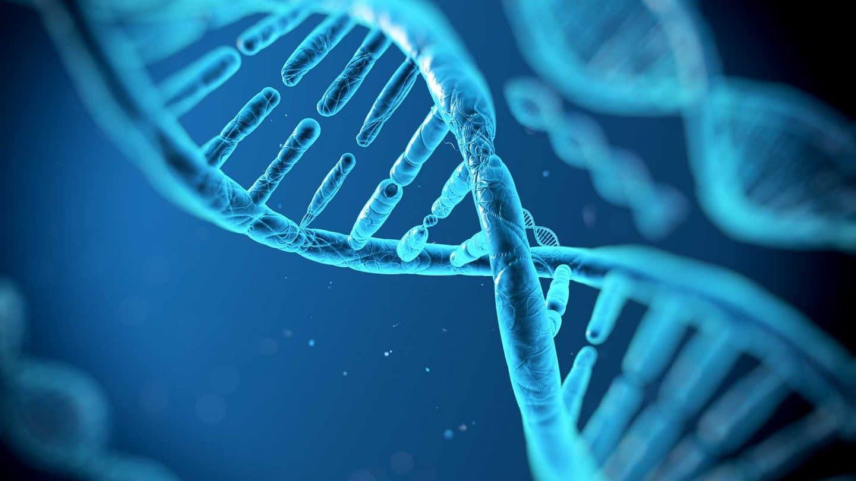 نتيجة بحث الصور عن الحمض النووي