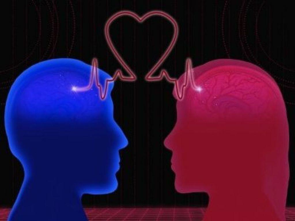 كيف يؤثر الحب على الدماغ؟