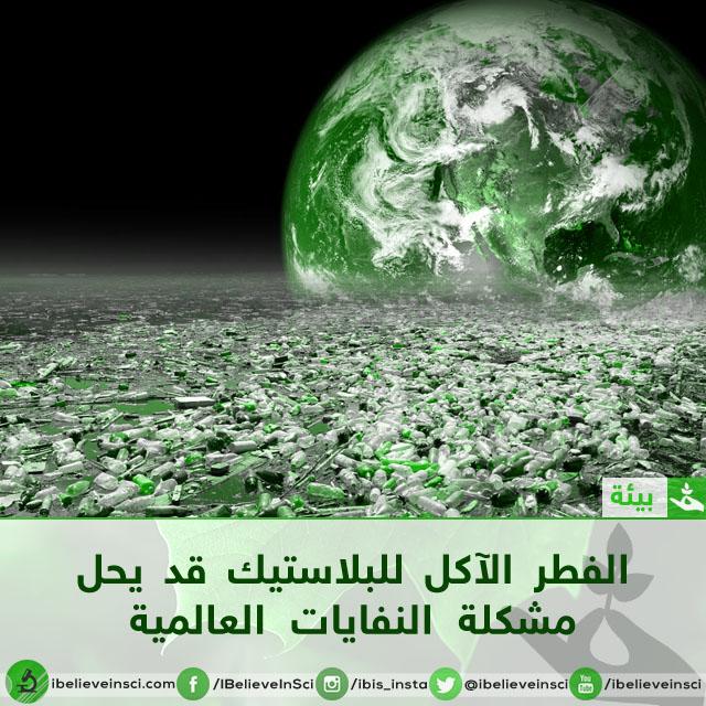 الفطر الآكل للبلاستيك قد يحل مشكلة النفايات العالمية