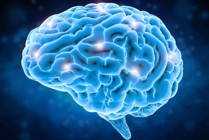 كيف يميل العقل وينحاز لفكرة أو معتقد معين؟