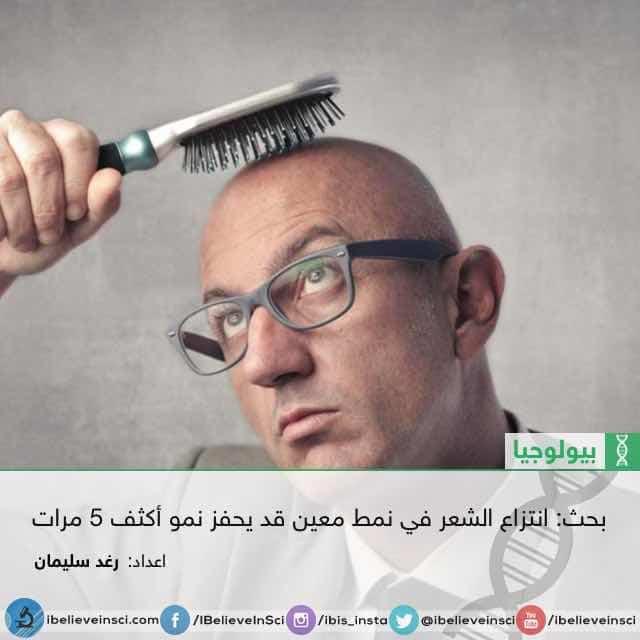 بحث: انتزاع الشعر في نمط معين قد يحفز نمو أكثف 5 مرات