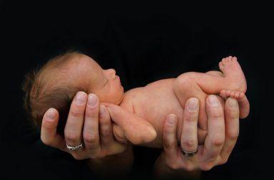 تنمية الأجنة في الأرحام الاصطناعية الحملزراعة الأجنة البشرية في المختبر باستخدام أرحام اصطناعية عالية التقنية تنمية أجنة البشر الحمل